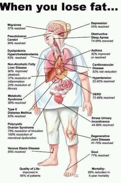 How your body is benefited when you lose fat? |Health Benefits
