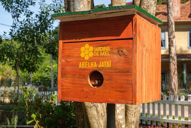 Caixa de abelhas nativas, sem ferrão.