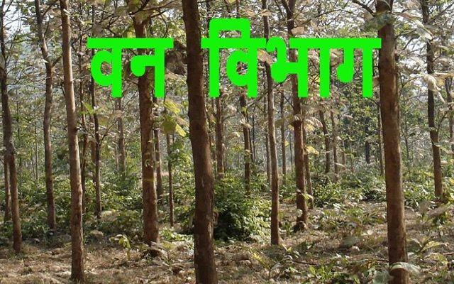 Maharashtra-forest-guard-admit-card