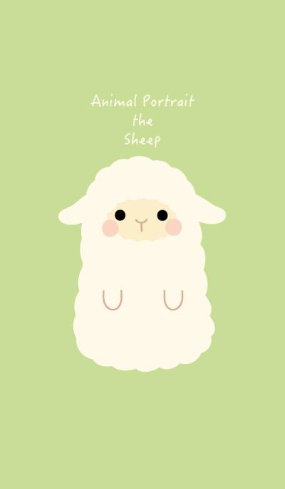Animal Portrait - Sheep