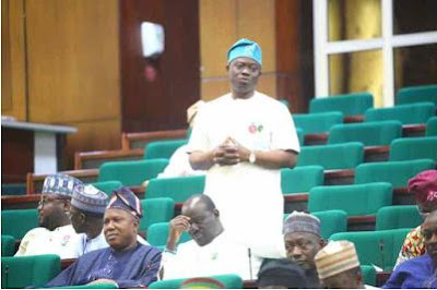 Nigerian Politics - House of Representatives