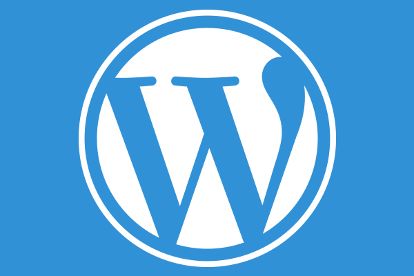 WordPress Website Customization: Best Practices and Tips You Need to Know