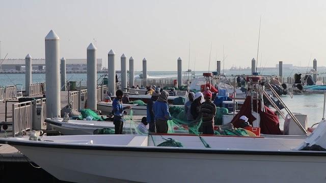 A trip to the Corniche Fish Market