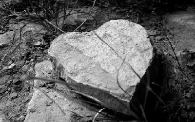 Sỏi đá cũng biết đau