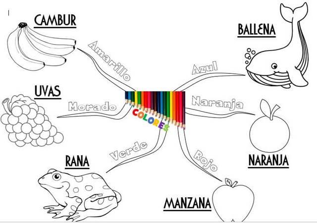 plantilla 6 de mapa mental para niños