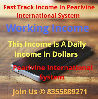 How to daily income in dollar