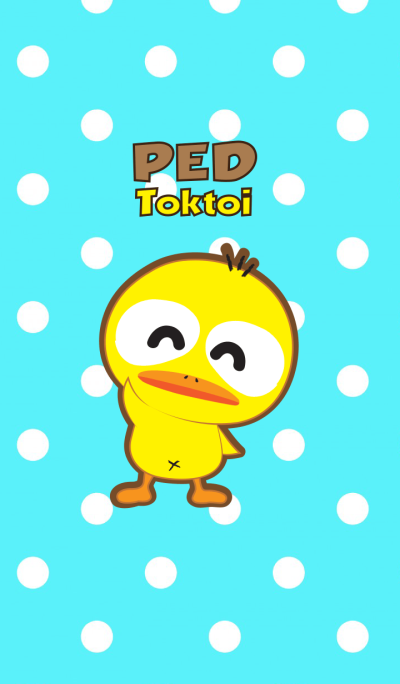 Little duck : Ped toktoi