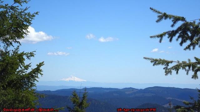 Kings Mountain - Mt hood View