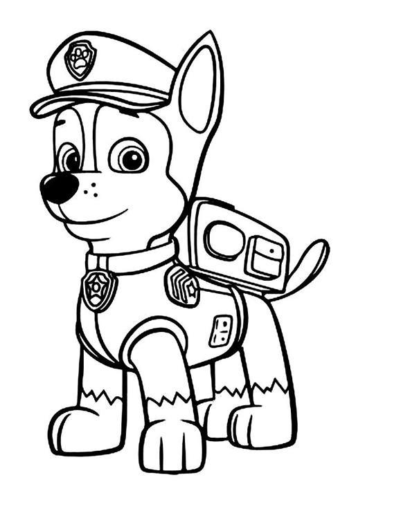 Angolino di liana regalini di compleanno paw patrol for Disegni da colorare paw patrol