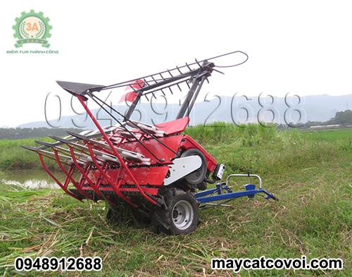 Hình ảnh Máy cắt cỏ voi 3A8Hp trên cánh đồng cỏ