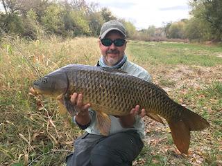 Texas Freshwater Fly Fishing, TFFF, Fly Fishing Texas, Texas Fly Fishing, Carp of the Fly, Carp Fishing Texas, Texas Carp Fishing, Fly Fishing For Carp, Jim Gray, Jim Gray Fly Fishing