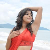 Splendid beauty Rashmi gauta sexy pics