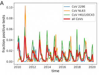 Estacionalidad de otros coronavirus