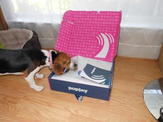 Pupjoy Surprise