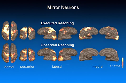 Mirror Neurons: How we learn by watching