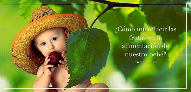 frutas dieta bebe itmum