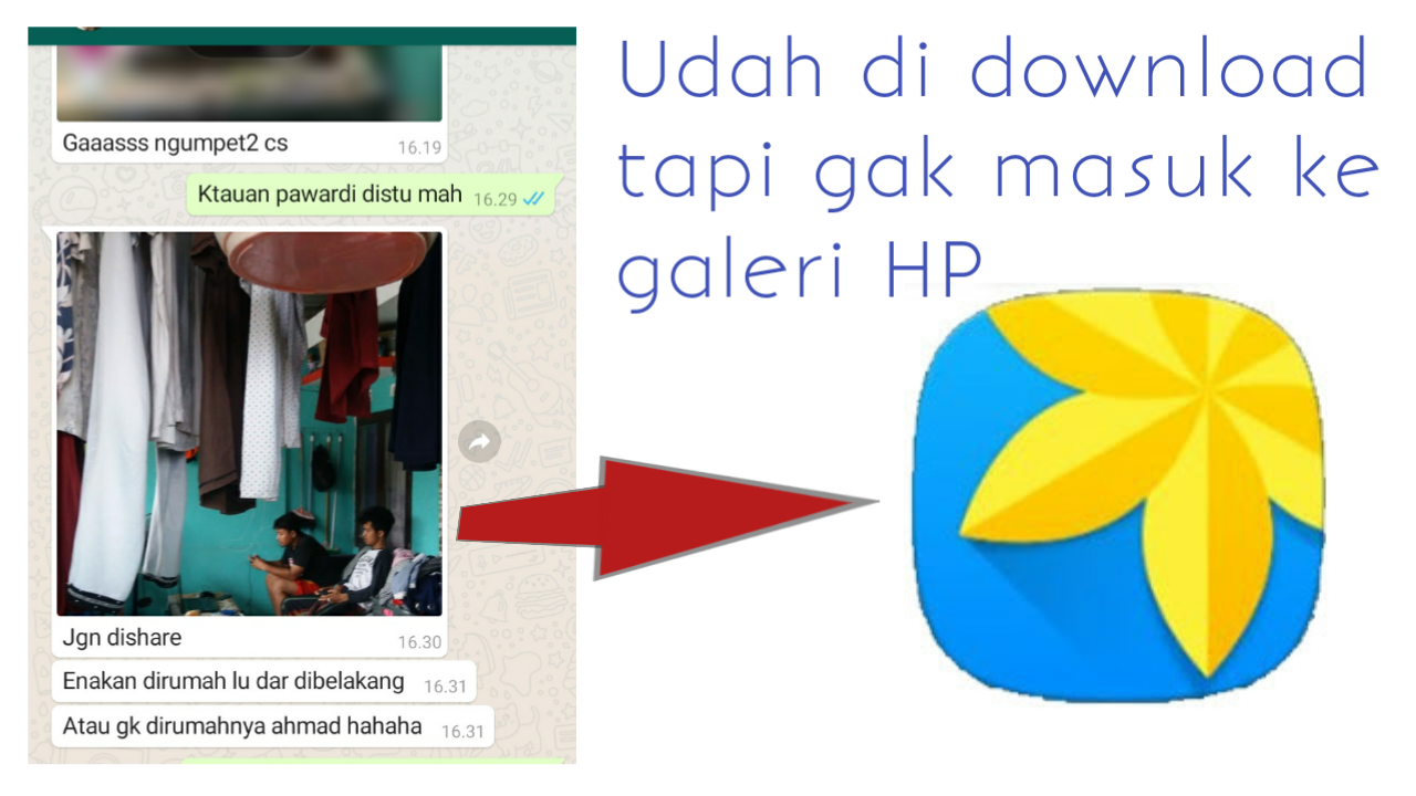 foto whatsapp tidak masuk ke galeri hp