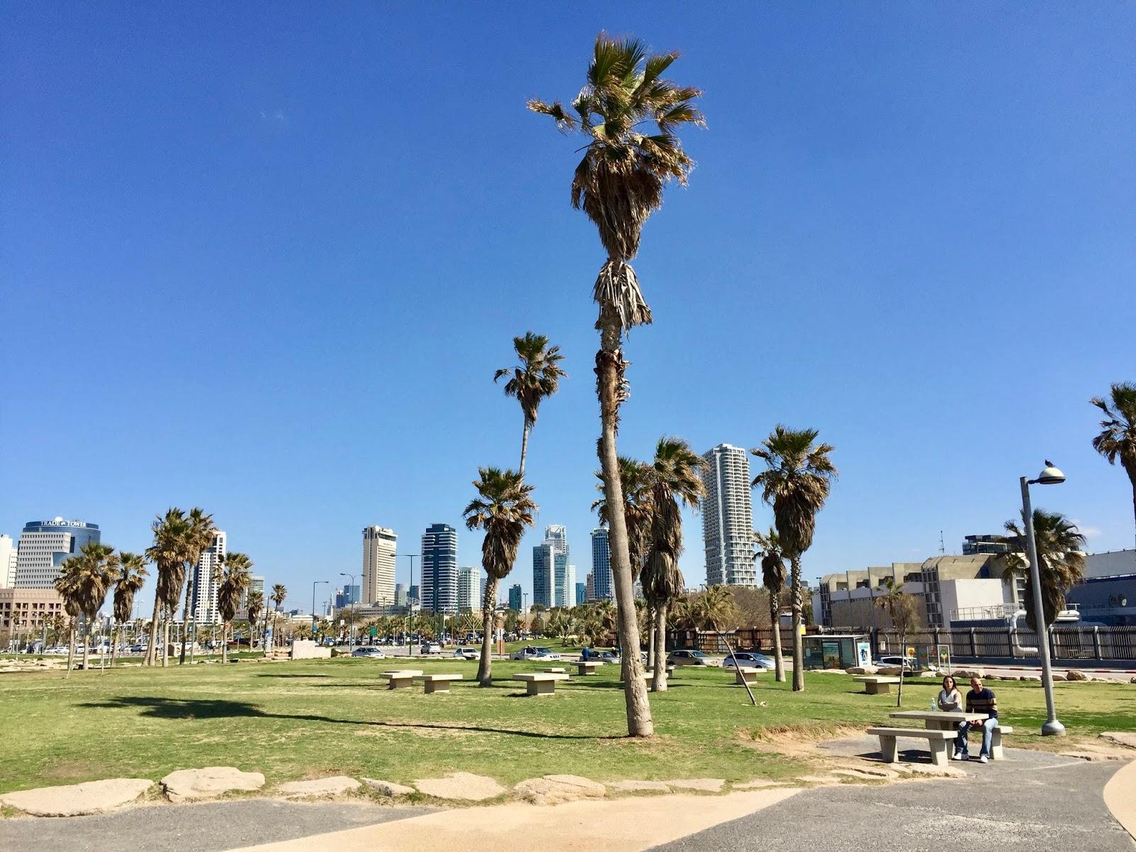 Palmy a mrakodrapy Tel Aviv
