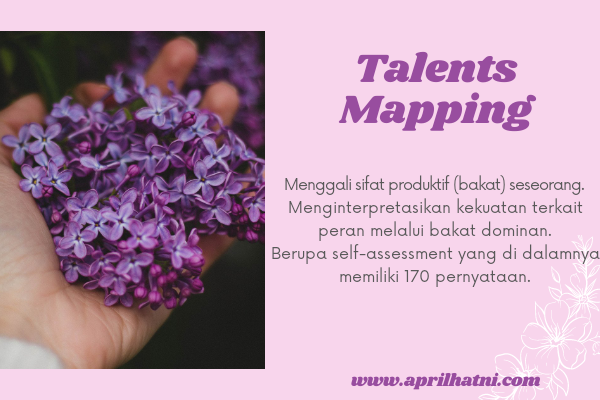 talent mapping assesment