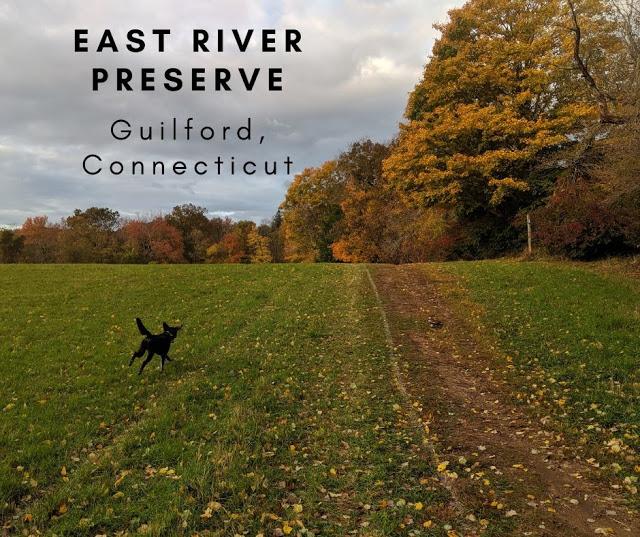 East River Preserve