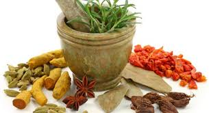 Image Ramuan herbal godog ngempot ngempot ayam