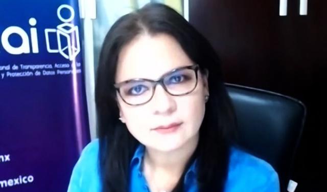 INAI propone sumar esfuerzos para erradicar la violencia política de género: Del Río Venegas
