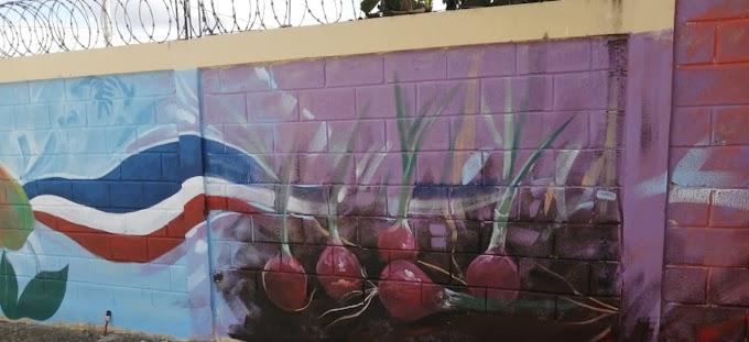 EN VALLEJUELO REGIDOR YEISON MORILLO INCENTIVA EL ARTE; COLORES REPRESENTATIVOS DE NUESTRA CULTURA HERMOSEAN MURALES DE CENTROS EDUCATIVOS