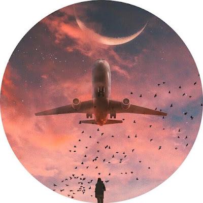 افتار مواقع التواصل طائره وسط الطيور والقمر معدله