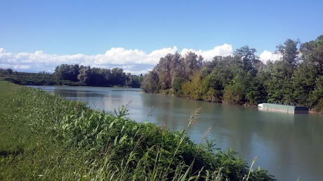grande guerra hemingway fiume piave