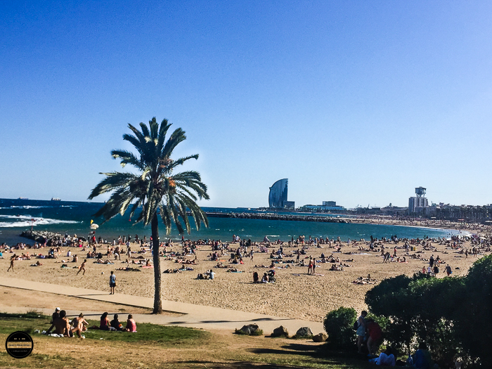 Barceloneta Beach popular and gorgeous view.