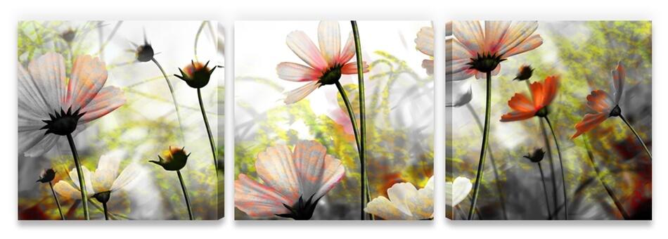 Quadro decorativo Flores em arte