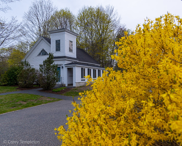 Portland, Maine USA April 2021 photo by Corey Templeton. A small chapel on Capisic Street. Framed by a bright forsythia plant on a rainy morning.