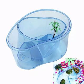 beli-aquarium-kura-kura-plastik.jpg