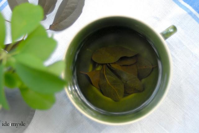 fermentowana herbata, herbata ziołowa, jadalne rośliny ogrodowe, herbata z akebii przepis