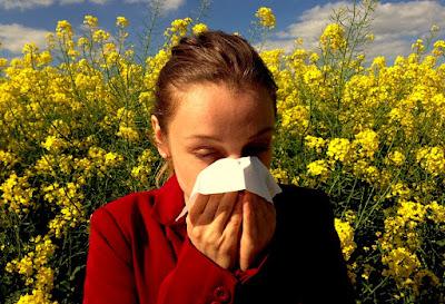 Cara alami Mengobati Flu Pada Ibu Hamil dan Menyusui