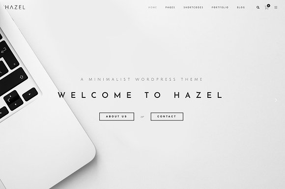 Hazel MultiPurpose Responsive WordPress Themes