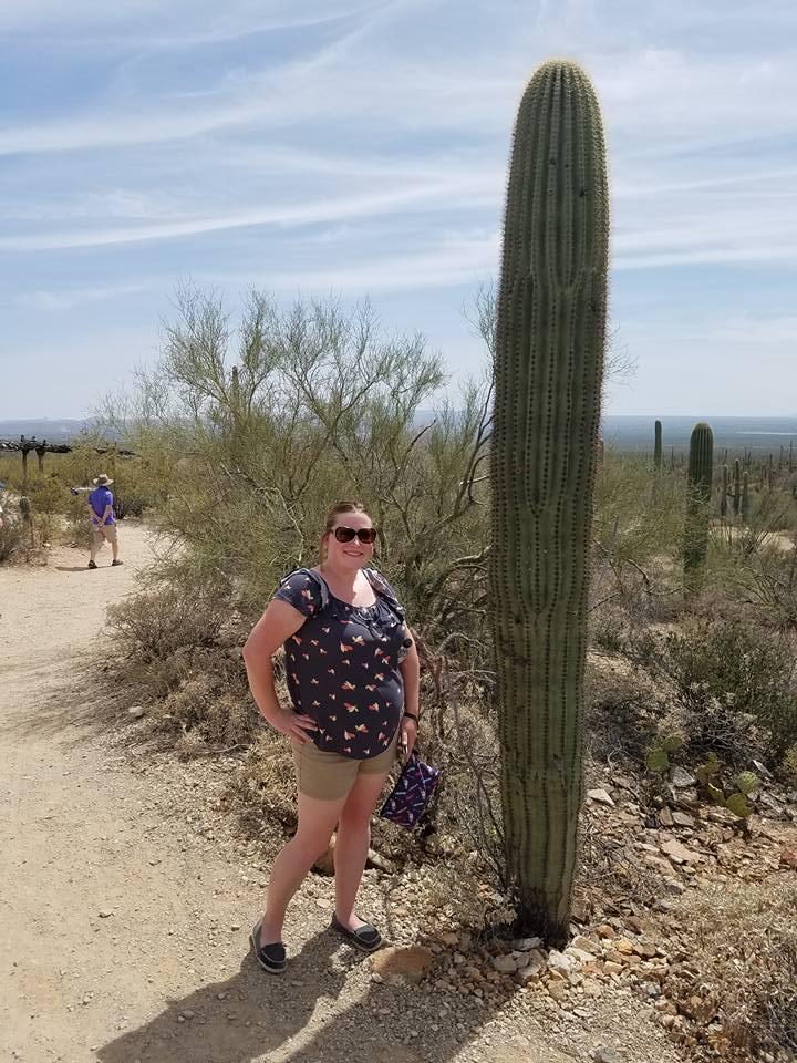 sonora desert museum saguaro bethani