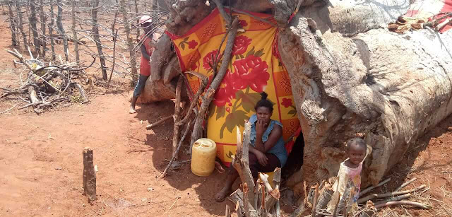 Pictures couple and their six children living inside a tree stump in Voi
