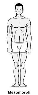 mesomorph, lean, man, male, fitness, body type