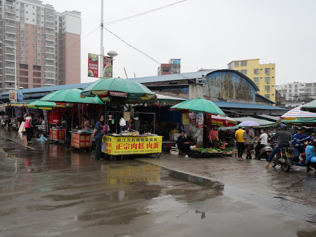 Yulin's Nanqiao (South Bridge) Market (玉林南桥市场)