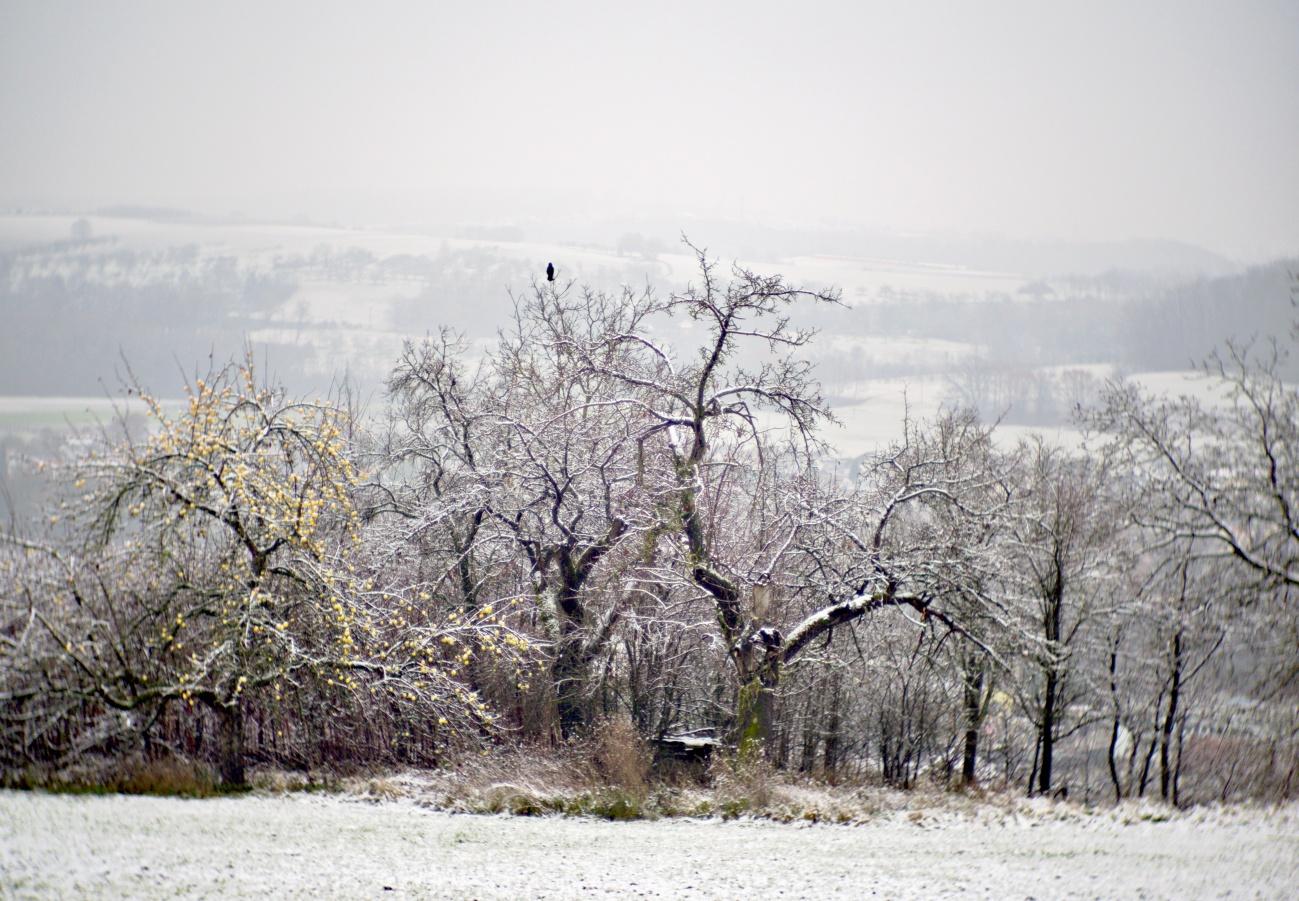 Erster Wintereinbruch der Saison