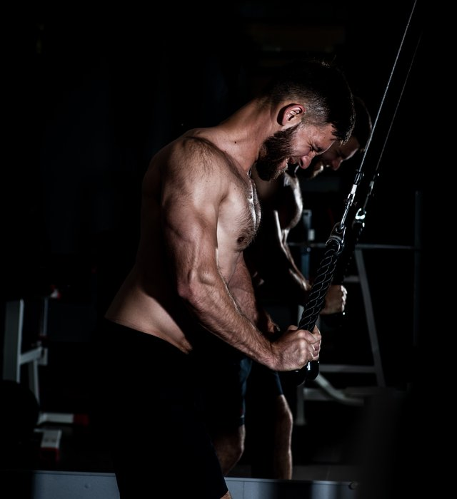 Tricep Extension - Tricep Exercises