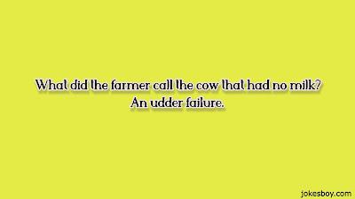 best cow puns