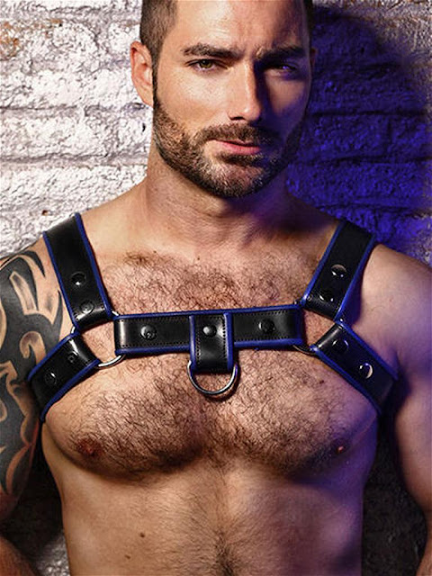 BoXer-Shoulder-Leather-Harness-with-Ring-Hook-Black-Blue-Gayrado-Online-Shop