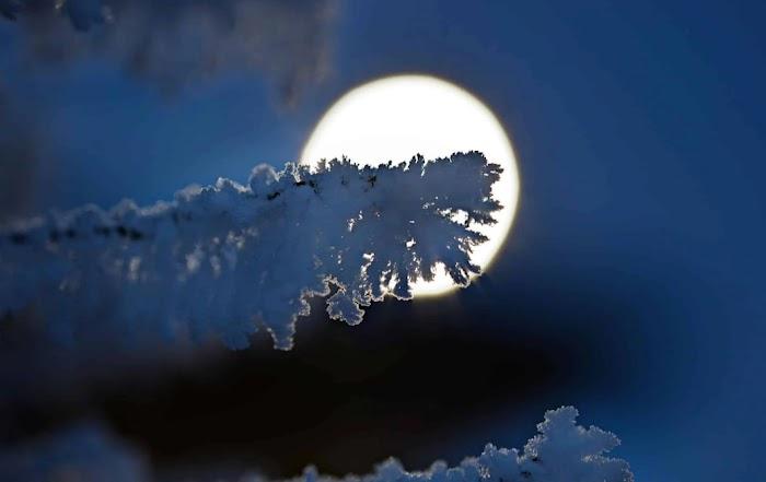 Последняя неделя января: Полнолуние и ретроградный Меркурий. Советы от планет