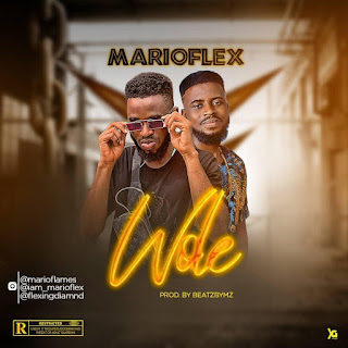 [Music] MarioFlex - Wole (Download Audio)