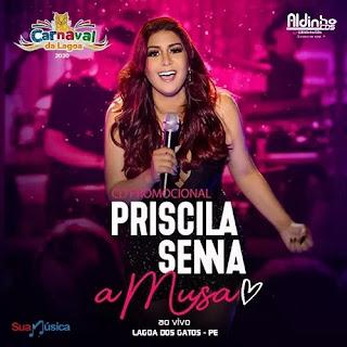 Baixar Priscila Senna - A Musa - Lagoa Dos Gatos - PE - Fevereiro 2020