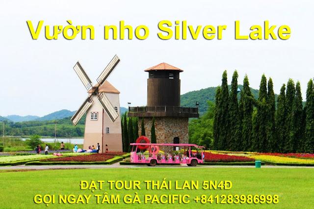 Du lịch Thái Lan với Vườn Nho Silver Lake tại Pattaya gọi Tâm Pacific