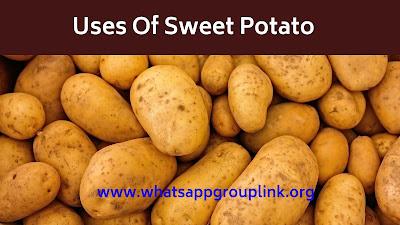 Uses Of Sweet Potato