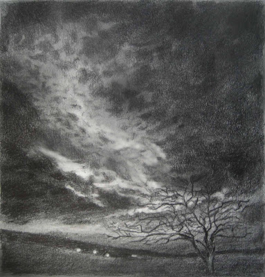 Tree, sky, drawing, graphite, dark sky, nocturne